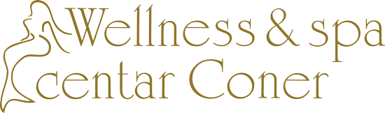 Wellness-Logo1